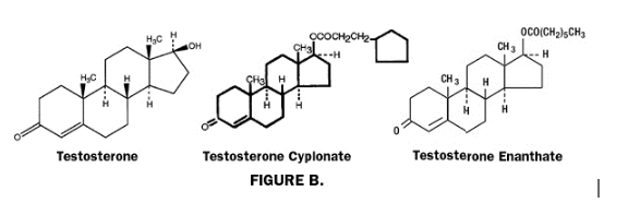 synthetic hormones